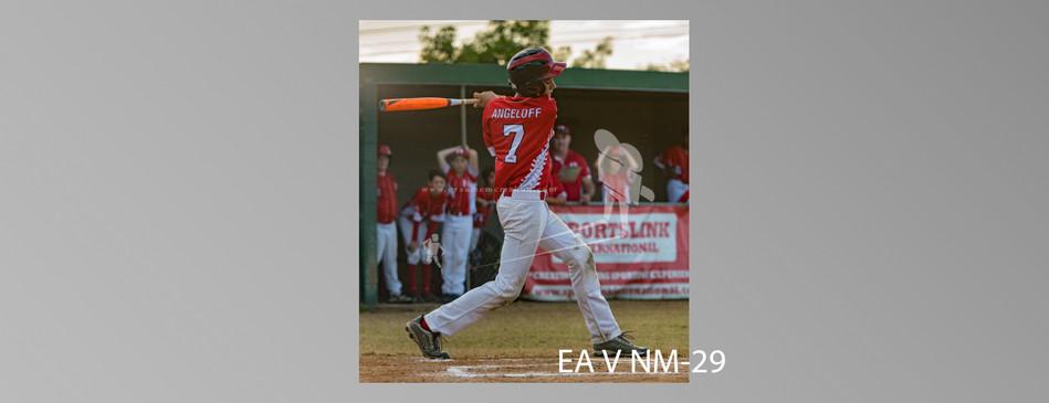EA V NM-029.jpg
