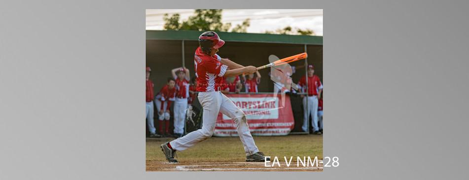 EA V NM-028.jpg