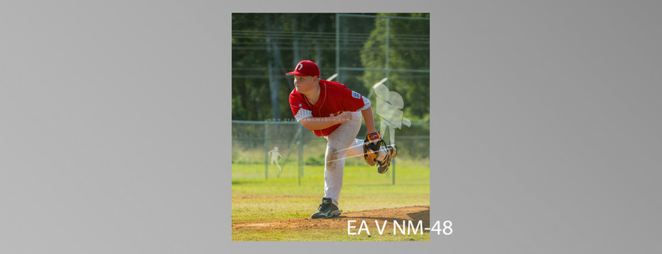 EA V NM-048.jpg