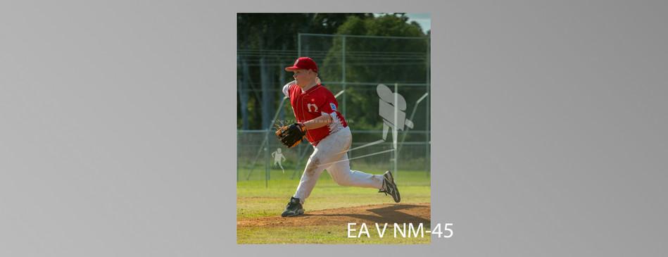 EA V NM-045.jpg