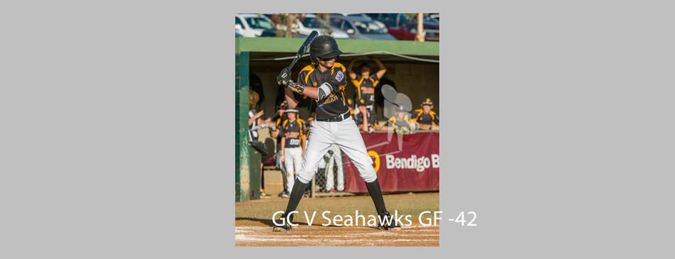 Seahawks V Cougars-042.jpg