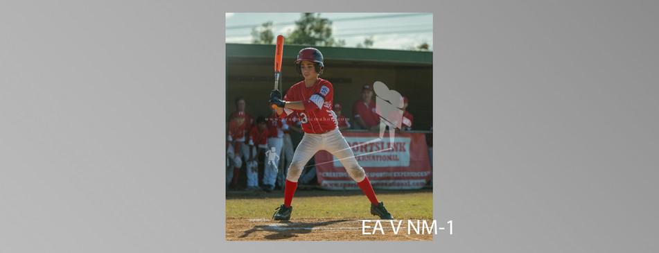 EA V NM-001.jpg