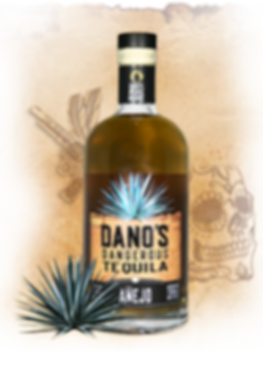 Anejo-COVER.png