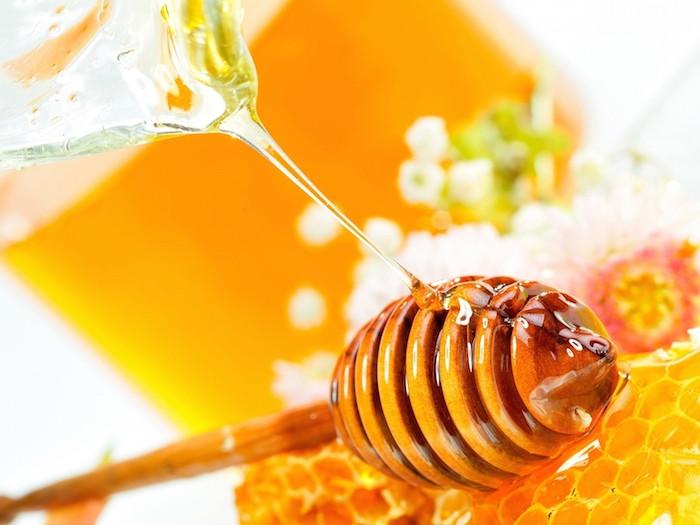 蜂蜜を見つけたら適度に食べよ。箴言25:16