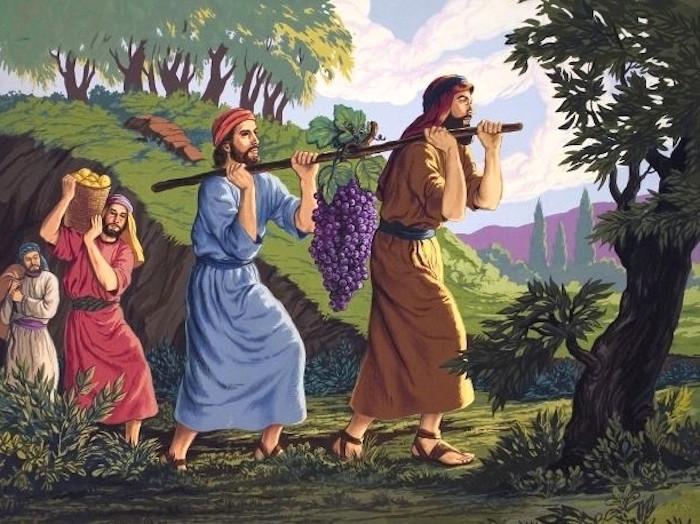 約束の地カナン Canaan, promised land