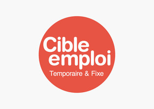 Logo design for Cible Emploi