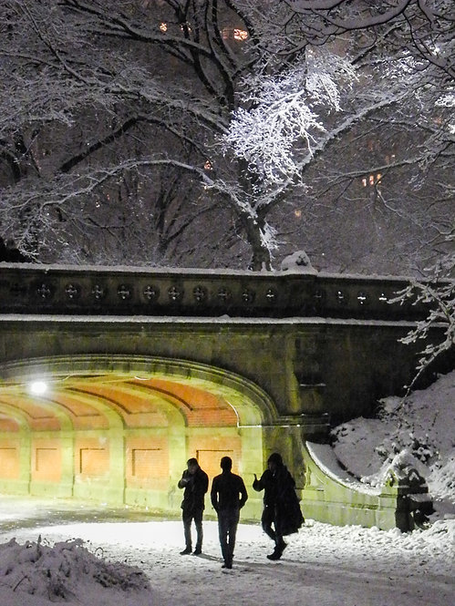 First Snow in Central Park