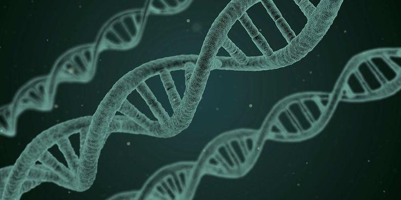 """ADN gène fond G&CTI"""""""