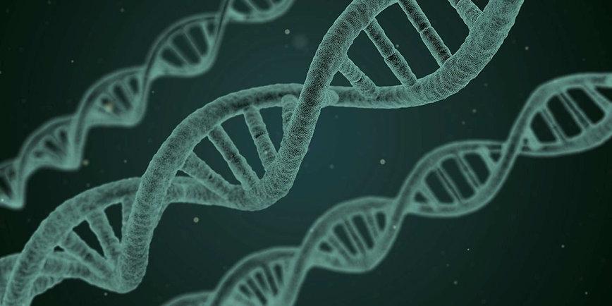 ADN gène fond g&cti