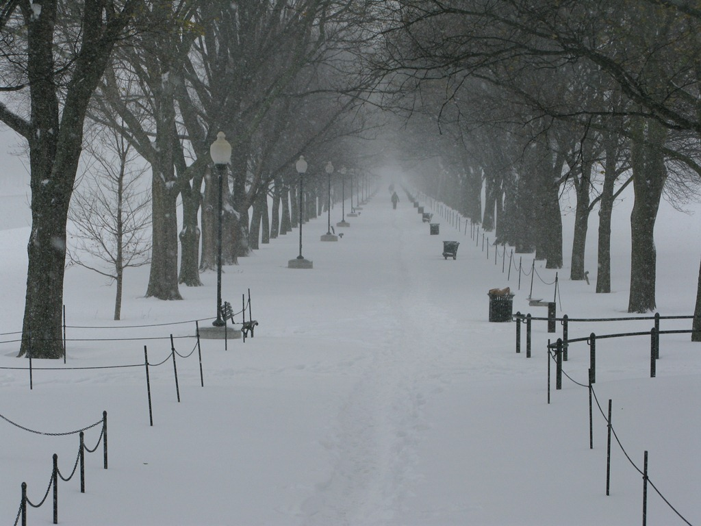 National Mall in Snow