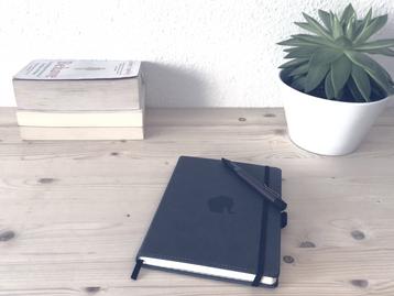 Tagebuch schreiben - Hype oder Hilfe? 300 Tage Selbsttest