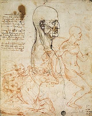 Leonard de Vinci, études.