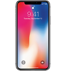 iPhoneX-SpGry.png