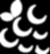 TextBerries Logo White.png