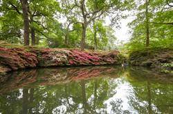 09_Still Pond