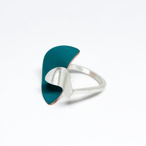 anel maré cheia