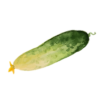 Concombre au vinaigre