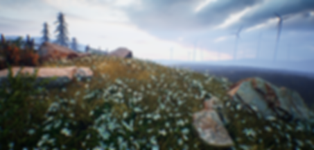 Windfarm_Y.png