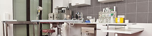 veterinary clinic disinfection services