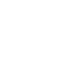 A black and white drawing of a leafy herb.