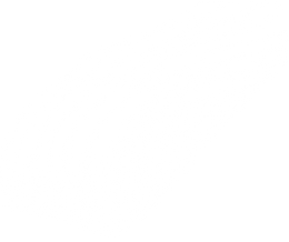 A black and white drawing of a center-cut salmon fillet.