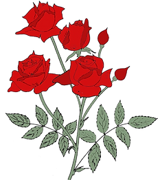 FrontCoverRoses (002)_edited.png