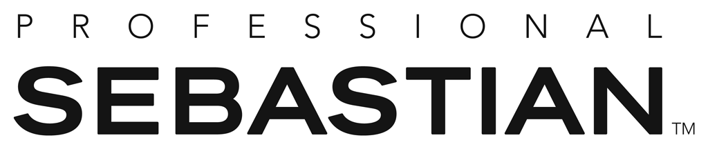 sebastian-professional-logo