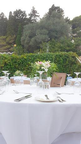 Outdoor seated wedding 13.jpg
