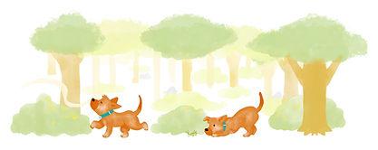 illustration chupi cricket.jpg