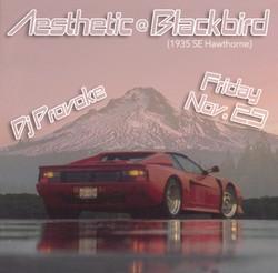 Blackbird aesthetic-112919