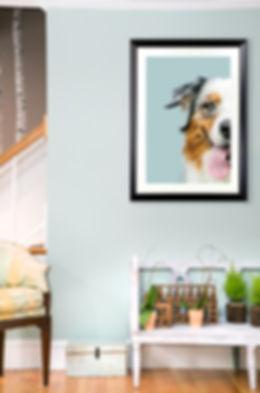 dogfaceinroom.jpg