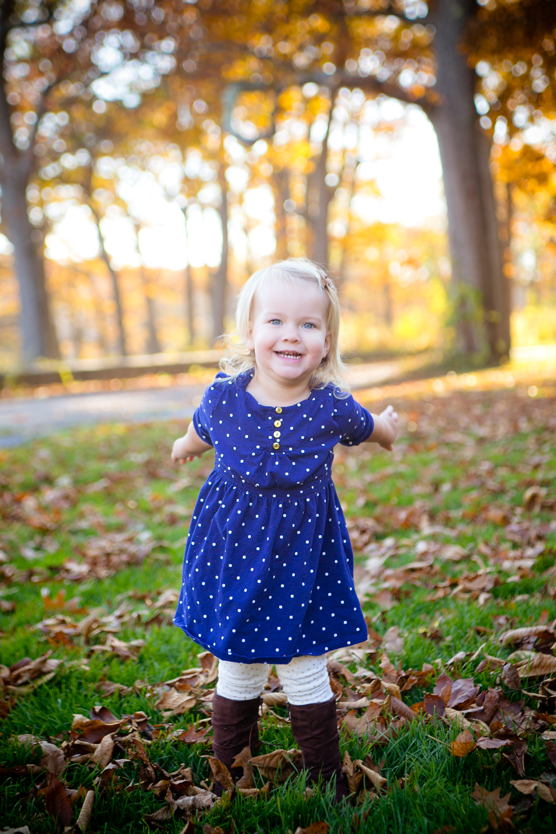 toddler portrait in the fall