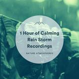 1 Hour of Calming Rain Storm Recordings