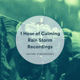 1 Hour of Calming Rain Storm Recordings