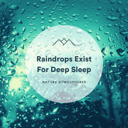 Raindrops Exist For Deep Sleep