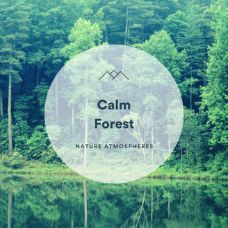 Calm Forest