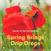 Spring Brings Drip Drops