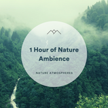 1 Hour of Nature Ambience