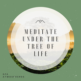 Meditate Under The Tree Of Life