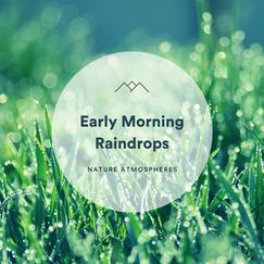 Early Morning Raindrops