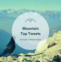 Mountain Top Tweets