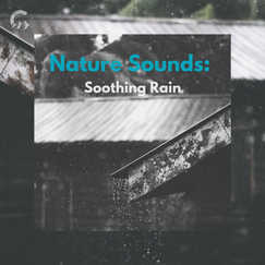 Nature Sounds: Soothing Rain