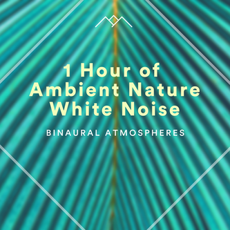 1 Hour of Ambient Nature White Noise