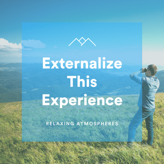 Externalize This Experience