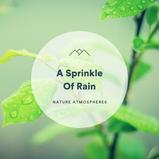 A Sprinkle Of Rain