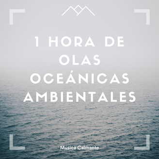 1 hora de olas oceánicas ambientales
