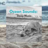 Ocean Sounds: Sleep Music