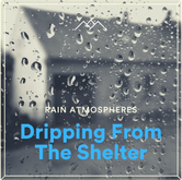 Dripping From The Shelter