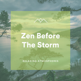 Zen Before The Storm