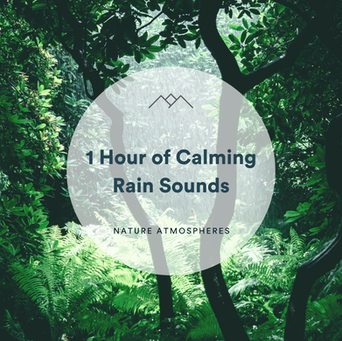 1 Hour of Calming Rain Sounds